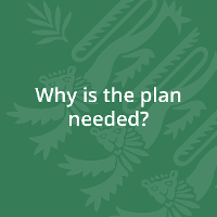 Why is the plan needed?